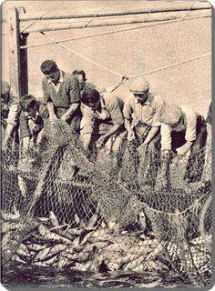 Karaköy / Balık akını - 1958  Ara Güler