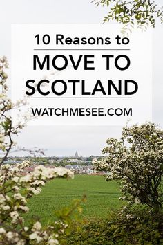 10 Reasons to Move to Scotland NOW In the recent light of Brexit I have been thinking over and over again: Thank God, I live in Scotland. Here are 10 reasons why you should move to Scotland! Moving To Scotland, Scotland Uk, England And Scotland, Scotland Travel, Scotland Trip, Scotland Vacation, Scotland Sightseeing, Edinburg Scotland, Places