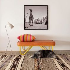 """Our shop dog LadyBird taking it easy in front of our Garza Marfa Upholstered Bench.and """"location photo"""" from the filming of GIANT in Marfa, Photos available through Ranch Decor, Take It Easy, Asian Decor, Upholstered Bench, Dream Decor, Home Staging, Country Chic, My Dream Home, Chair Design"""