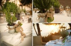A Greek Flavored Wedding Party @ Island by De Plan V. Greek herbs in a pot tied with a small bag filled with bon bons! Early Fall Weddings, Wedding Events, Wedding Ideas, Jewel Tones, Mykonos, Mother Earth, Green And Gold, Showers, Rustic Wedding