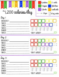 21 Day Fix Logging System Tracking Sheet by 21DayFixPrintables