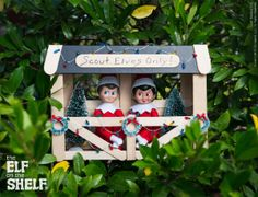 THE ELF ON THE SHELF~ELF CLUBHOUSE