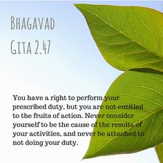 Right to perform duty Sanskrit Quotes, Vedic Mantras, Motivational Picture Quotes, Inspirational Quotes, Yoga Quotes, Wisdom Quotes, Life Quotes, Habit Quotes, Elegance Quotes