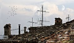 Rooftops by giuseppepeppoloni #landscape #travel