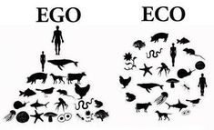 It's time for humans to get off their high horses. We are all a part of this earth and all deserve a spot on it. Regrets will come when the egos grow bigger