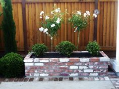 Used brick from Stanford University, 3 golf ball globes, with white iceberg rose trees in back ground.Good Life of Design