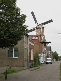 - Photo by Petka Vlaardingen