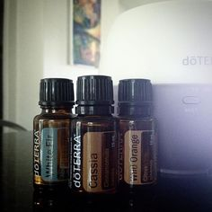 """Mom! What smells so, so good?"" - Ben, age 3.  This, honey, THIS. Unreal how amazing it smells! Diffuser recipe: 2 drops each of WHITE FIR, CASSIA, and WILD ORANGE. Try it! doterra diffuser blends"