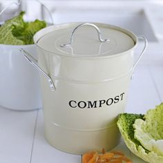 ::::::@Regan Leahy...this is what everyone needs to keep kitchen compost on the countertop!