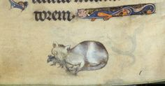 book of hours (the 'Harley Hours'), England 13th century* (British Library, Harley 928, fol. 44v)    *cat added later(?)