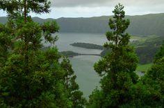 #Azores #SaoMiguel #nature