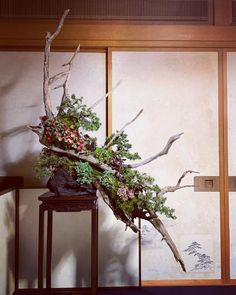 Flower Arrangement, Floral Arrangements, Art Floral, Floral Design, Cascade Design, Ikebana Sogetsu, Funeral Flowers, Colorful Interiors, Veronica