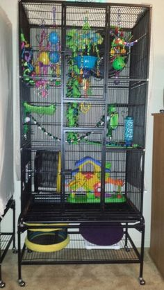 Sugar Glider cage...big...with lots of toys!