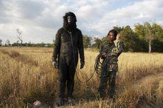 Apichatpong Weerasethakul , Monkey and Soldier
