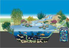 Pond Planner, How To Build A Pond, PondUSA.com, Pond, Fountain ...