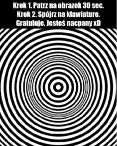 Weekend Humor, Optical Illusions, Cool Stuff, Memes, Funny, Magick, Laughing, Poster, Animal Jokes