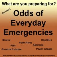 Odds of Everyday Emergencies. Common Sense Homesteading. This is a really good reference site