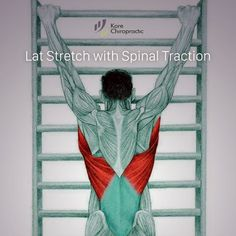 So what kind of muscles do you stretch when you do yoga? Look at these stretching exercises with pictures do find out - Vicky Tomin is a Yoga exercise Scoliosis Exercises, Back Exercises, Stretching Exercises, Yoga Sequences, Yoga Poses, Muscle Stretches, Kundalini Yoga, Massage Therapy, How To Do Yoga