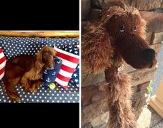 Excited to share this item from my shop: Made to order Hand knit Irish Setter golf driver cover Golf Drivers, Irish Setter, Pet Tags, Some Pictures, Hand Knitting, Your Pet, My Etsy Shop, Hands