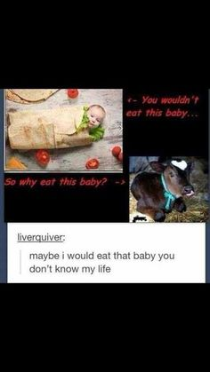 I would eat a cow because it is not a human life with a soul. Cows aren't intelligent beings. Gosh! people are dumb.