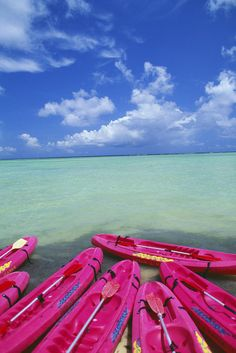 Pink Kayaks Fine Art Print -By Dana Edmunds