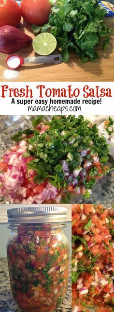 Homemade Tomato Salsa from Garden Veggies
