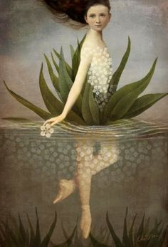 """""""Waterlily"""" Picture by Catrin Welz-Stein posters, art prints, canvas prints, greeting cards or gallery prints. Find more Picture art prints and posters in the ARTFLAKES shop. Art And Illustration, Art Illustrations, Fantasy Kunst, Fantasy Art, Art Du Monde, Inspiration Art, Canvas Prints, Art Prints, Framed Prints"""