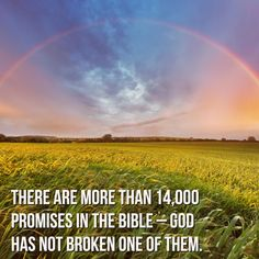 There are more than 14,000 promises in the Bible - God has not broken one of…