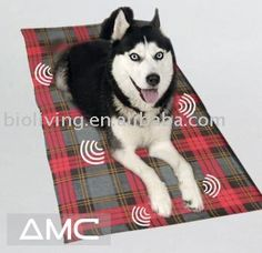 Looking for a dog cooling mat or dog cooling pad for your pooch or pet? We supply a range of cooling pads and mats for dogs and other pets in various sizes. http://www.snugglezzz.com/cooling_pads_mats_for_dogs_p/pcm.htm