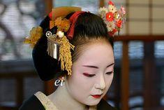 Maiko Mikako 2015 舞妓実佳子 新年ご挨拶 : ちょっとそこまで