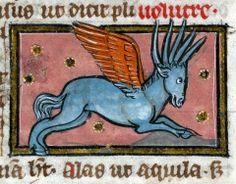 Thomas of Cantimpré, Liber de natura rerum, France ca. 1290 (Valenciennes, Bibliothèque municipale, ms. 320, fol. 76v)