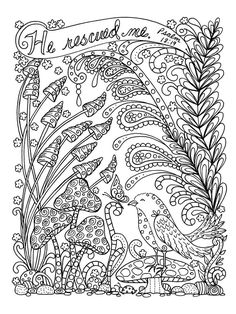Deborah Muller Art ChubbyMermaid Adult Coloring