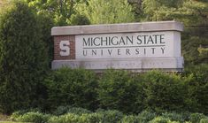 Five MSU student athletes have been recognized for excellence both on the playing field and in the classroom, earning the school's highest athletic awards for 2012-13.