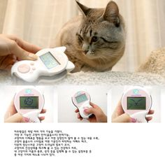 Japanese Products Meowlingual 3
