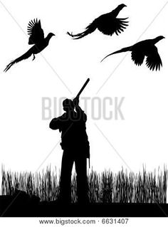 Pheasant Hunting Images, Stock Photos & Illustrations | Bigstock