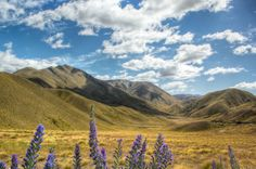 I want to see Middle Earth    Golden Central Otago, NZ