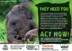 Act now! This must be stopped: Please Sign Thank You www.change.org/LeuserHeritage