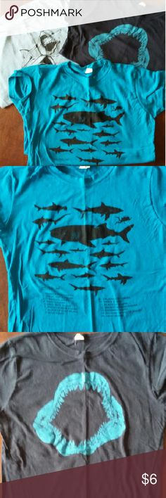 Shark t-shirts Bundle of three shark tees, all fitted crewneck and run small: Medium blue shark species chart  (Tultex M) Navy Megalodon mouth (qh M) Light blue cone of shame (Delta M) Tops Tees - Short Sleeve