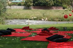 Red & Black Picnic Wedding by Dial-a-Picnic