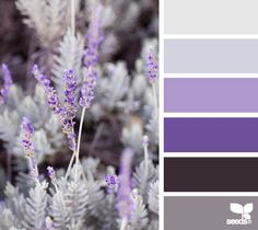 Moody shades of gray and lavender are perfect for a sultry yet pretty occasion #PPEvents