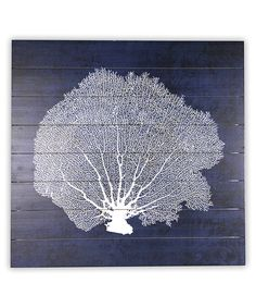 Loving this Coral On Navy Wall Art on #zulily! #zulilyfinds