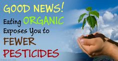 reduce your exposure to pesticides by buying organic #plantbased #health