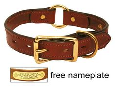 Leather Dog Collar with Name Plate. $22.95 (Save $2.04)