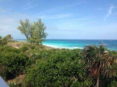 Bahamas Salvaje Alejado paraíso