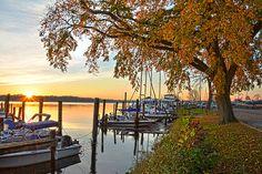 Alexandria Virginia Photography, Landscape Photo, Marina, Harbor, Wall Art, Corporate Art, Potomac River, Maryland, Dyke Marsh, Sunrise, Art