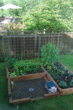 square foot gardening: