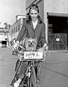 Audrey Hepburn backstage at Paramount Studios with her Yorkshire terrier, Mr. Famous, in California, in 1961.