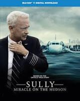 Buy Sully: Miracle on the Hudson from Zavvi, the home of pop culture. Take advantage of great prices on Blu-ray, merchandise, games, clothing and more! Mike O'malley, Hudson River, Tom Hanks, Sully, Clint Eastwood, True Stories, Digital, Life, Fictional Characters