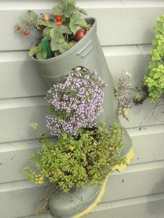 Gumboots or wellingtons - whatever you call them, when they spring a leak, they make practical upcycled feature planters. Strawberries in the top & herbs & flowers poked into slots below. Have fun! | The Micro Gardener