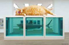 La imposibilidad física de la muerte en la mente de alguien vivo , de Damien Hirst (o como la conocen, la del tiburón). | 17 obras de arte clásicas mejoradas por un gato gordo pelirrojo